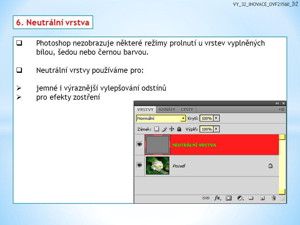VY_32_INOVACE_OVF21560_ŽIŽ 6.