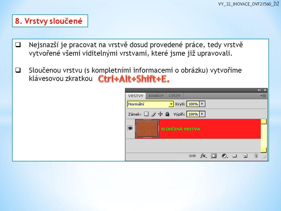 VY_32_INOVACE_OVF21560_ŽIŽ 8.