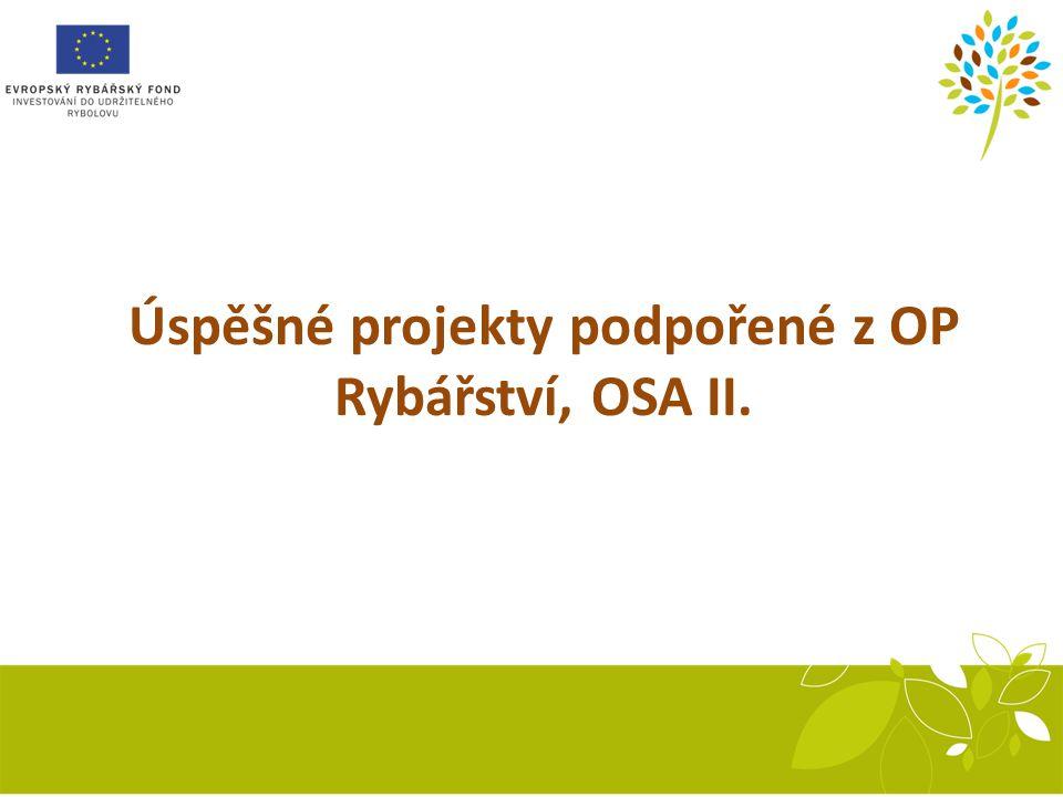 Sestava inkubačních žlabů Recirkulační systém Úspěšné projekty podpořené z OP Rybářství, OSA II.