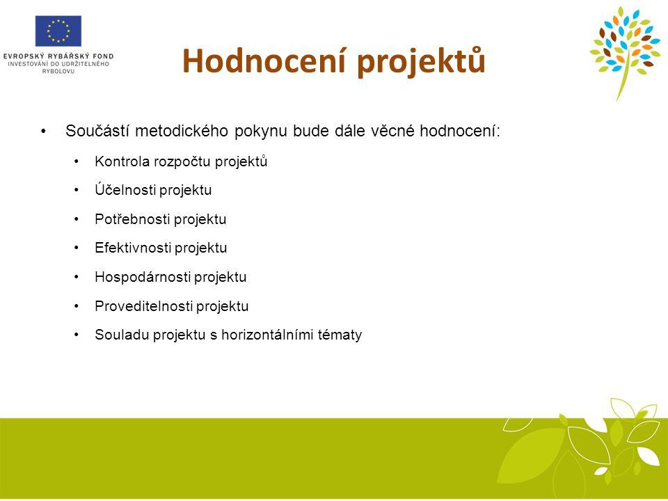 Hodnocení projektů Součástí metodického pokynu bude dále věcné hodnocení: Kontrola rozpočtu projektů Účelnosti projektu Potřebnosti projektu Efektivnosti projektu Hospodárnosti projektu Proveditelnosti projektu Souladu projektu s horizontálními tématy