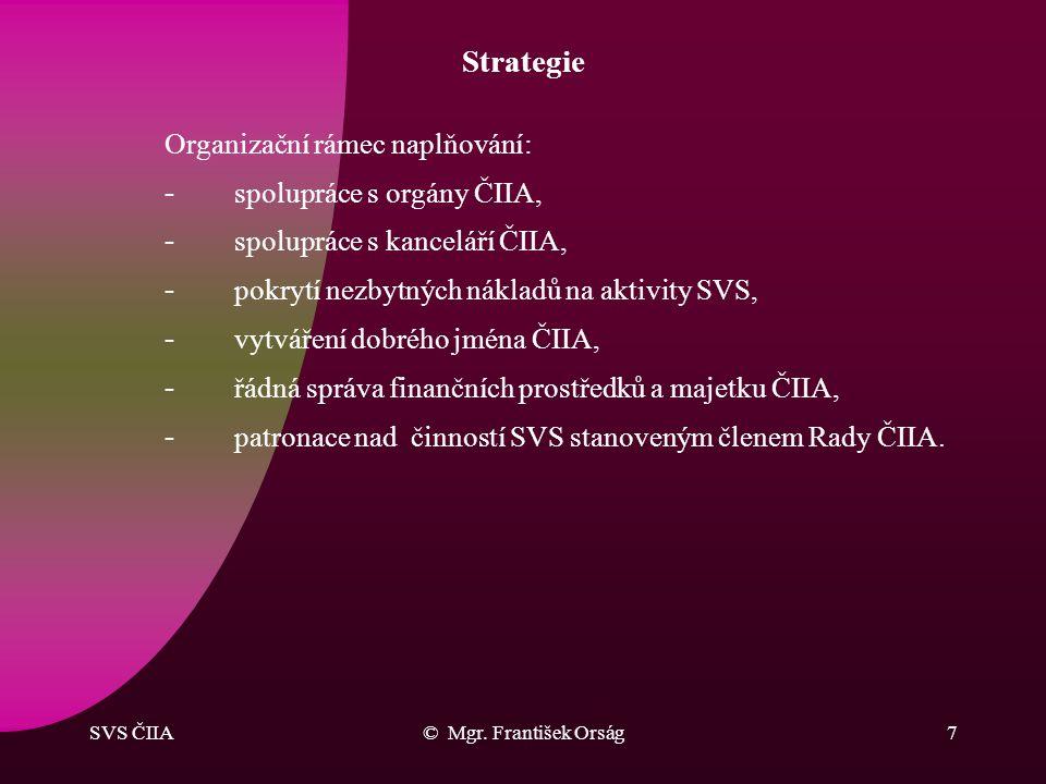 SVS ČIIA© Mgr. František Orság6 Strategie Východiskem pro činnost se staly analýzy: –členské základny ČIIA, –schopnosti jednotlivců z veřejné správy p