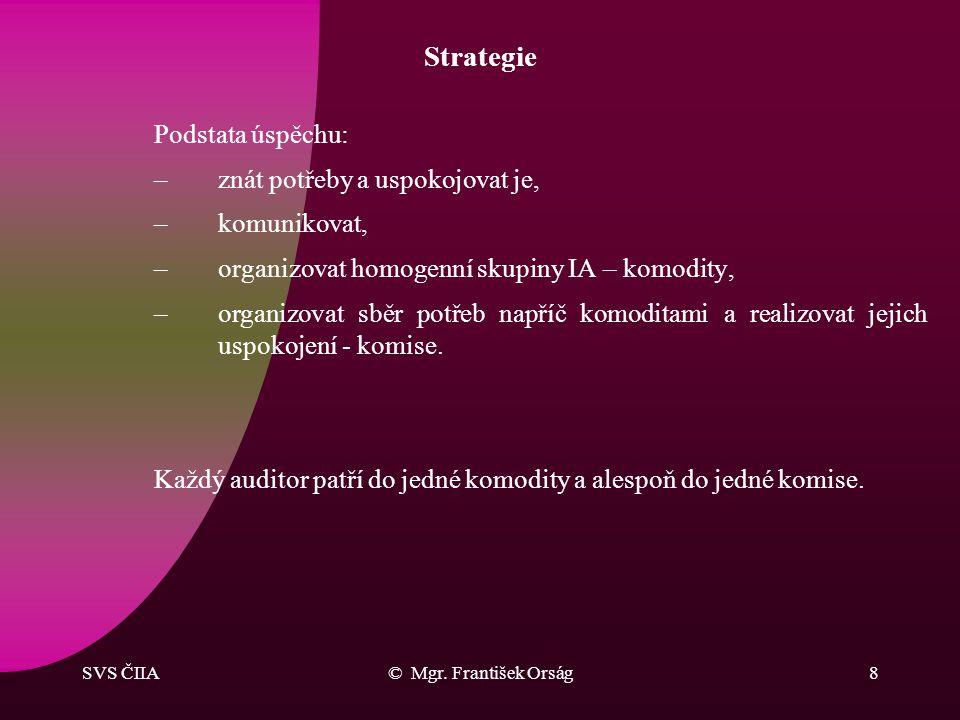 SVS ČIIA© Mgr. František Orság7 Strategie Organizační rámec naplňování: -spolupráce s orgány ČIIA, -spolupráce s kanceláří ČIIA, -pokrytí nezbytných n