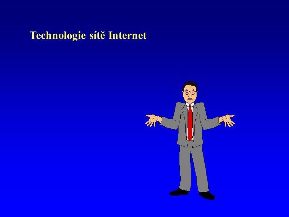 Technologie Internetu jsou v dnešní době široce používány a představují často rozhodující faktor úspěšnosti firem.