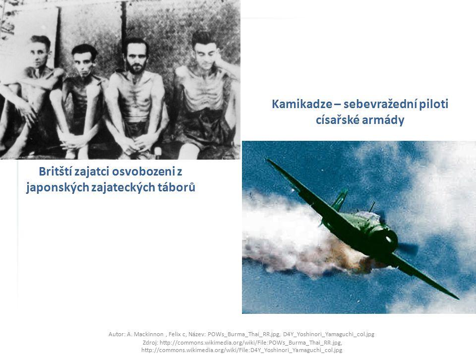 Britští zajatci osvobozeni z japonských zajateckých táborů Autor: A. Mackinnon, Felix c, Název: POWs_Burma_Thai_RR.jpg, D4Y_Yoshinori_Yamaguchi_col.jp
