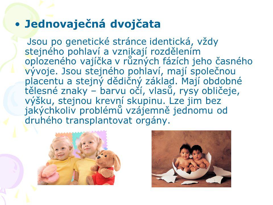 Jednovaječná dvojčata J sou po genetické stránce identická, vždy stejného pohlaví a vznikají rozdělením oplozeného vajíčka v různých fázích jeho časné