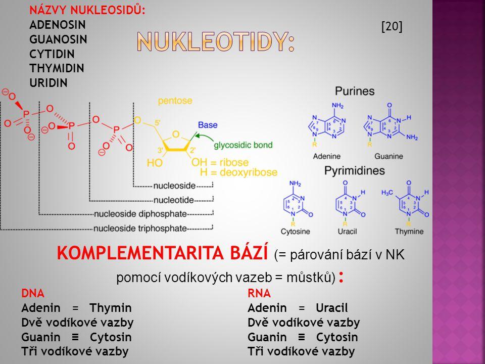 KOMPLEMENTARITA BÁZÍ (= párování bází v NK pomocí vodíkových vazeb = můstků) : DNA Adenin = Thymin Dvě vodíkové vazby Guanin ≡ Cytosin Tři vodíkové vazby RNA Adenin = Uracil Dvě vodíkové vazby Guanin ≡ Cytosin Tři vodíkové vazby [20] NÁZVY NUKLEOSIDŮ: ADENOSIN GUANOSIN CYTIDIN THYMIDIN URIDIN