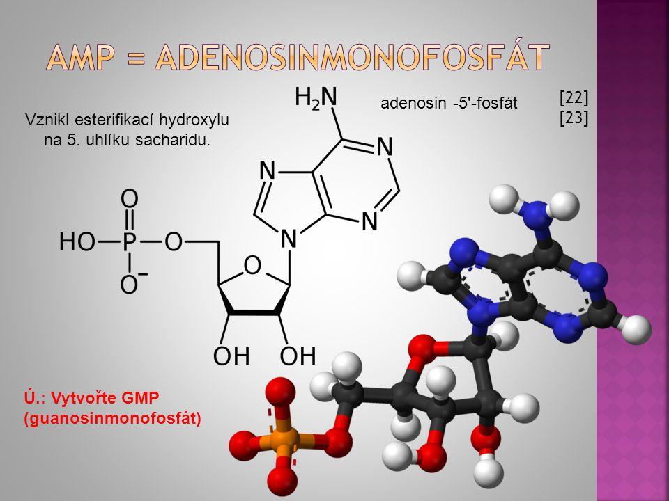 [22] [23] Ú.: Vytvořte GMP (guanosinmonofosfát) Vznikl esterifikací hydroxylu na 5.