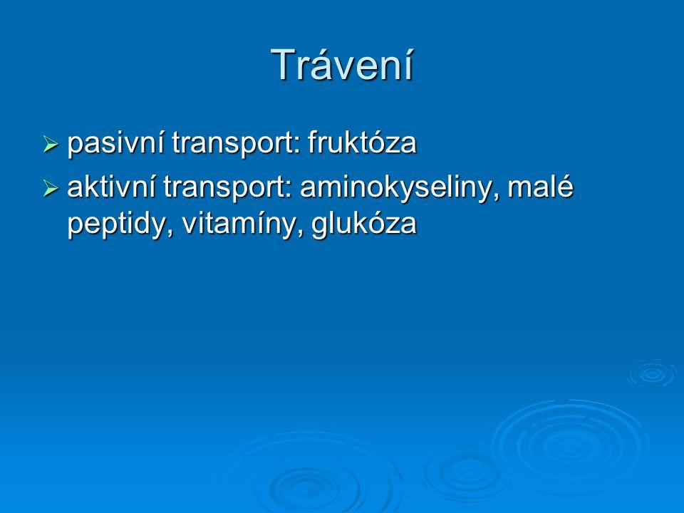 Trávení  pasivní transport: fruktóza  aktivní transport: aminokyseliny, malé peptidy, vitamíny, glukóza
