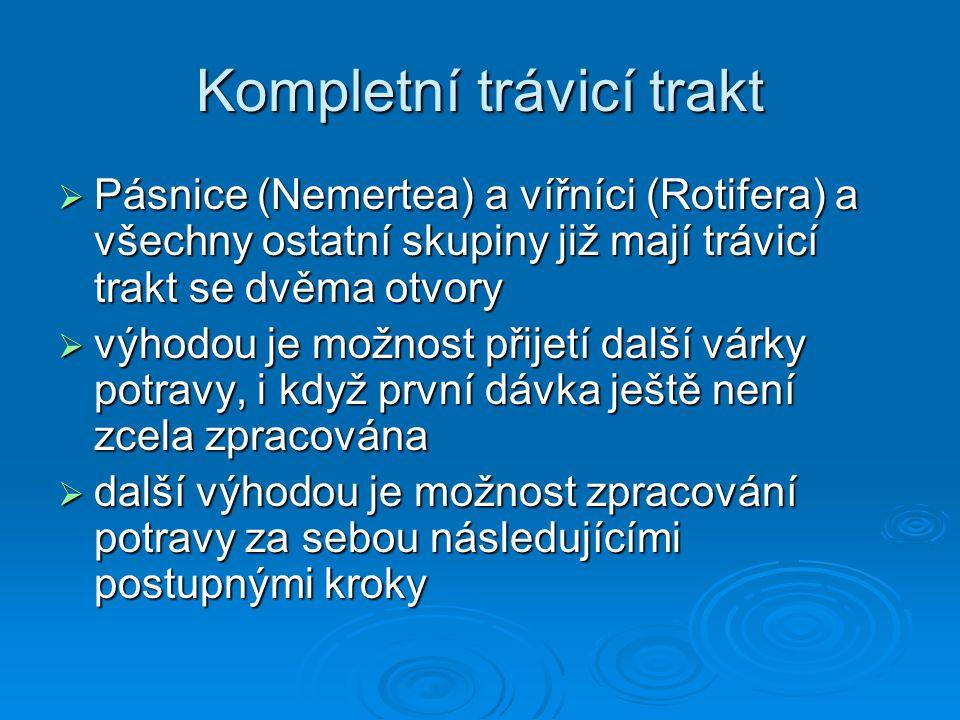 Kompletní trávicí trakt  Pásnice (Nemertea) a vířníci (Rotifera) a všechny ostatní skupiny již mají trávicí trakt se dvěma otvory  výhodou je možnos