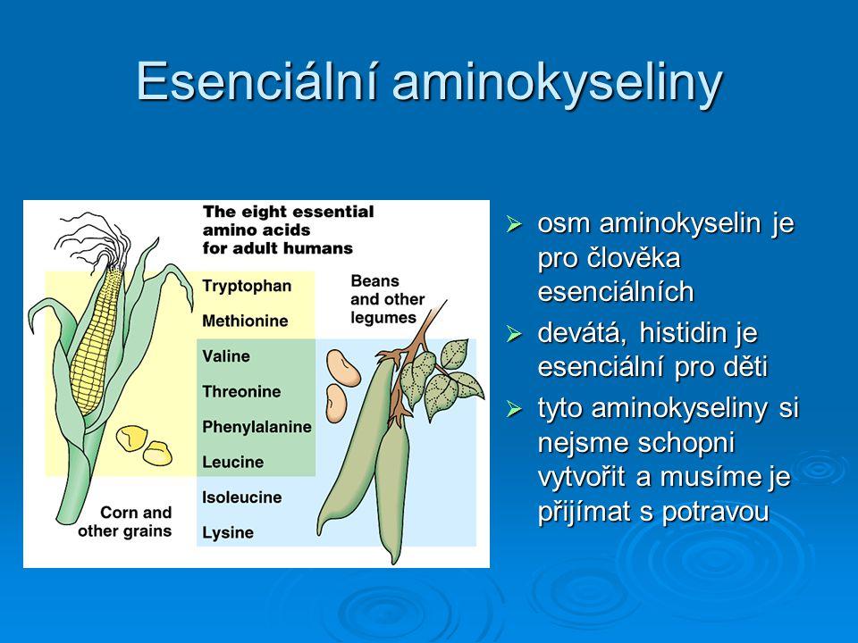Esenciální aminokyseliny  osm aminokyselin je pro člověka esenciálních  devátá, histidin je esenciální pro děti  tyto aminokyseliny si nejsme schop