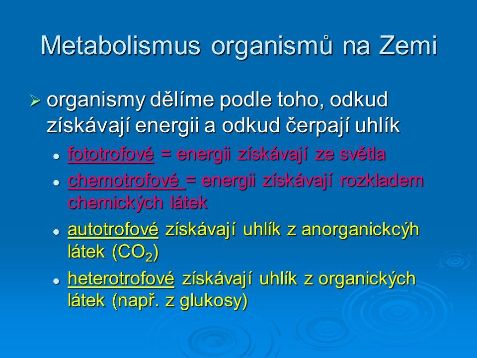 Metabolismus organismů na Zemi  fotoautotrofové = uhlík získávají z anorganických látek (CO 2 ),energii ze světla sinice, zelené řasy, rostliny sinice, zelené řasy, rostliny  chemoautotrofové = uhlík získávají z anorganickcýh látek, energii z oxidací anorganických látek (např.