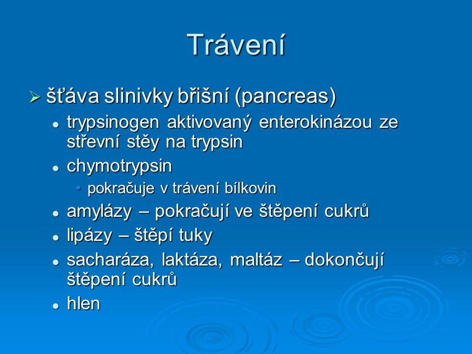 Trávení  šťáva slinivky břišní (pancreas) trypsinogen aktivovaný enterokinázou ze střevní stěy na trypsin trypsinogen aktivovaný enterokinázou ze stř