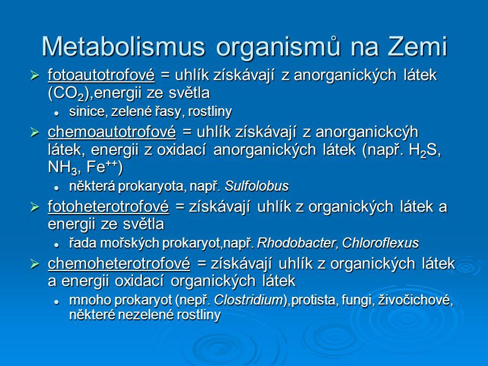 Metabolismus organismů na Zemi  fotoautotrofové = uhlík získávají z anorganických látek (CO 2 ),energii ze světla sinice, zelené řasy, rostliny sinic