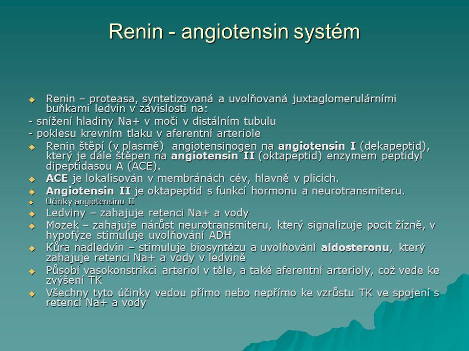 Renin - angiotensin systém  Renin – proteasa, syntetizovaná a uvolňovaná juxtaglomerulárními buňkami ledvin v závislosti na: - snížení hladiny Na+ v