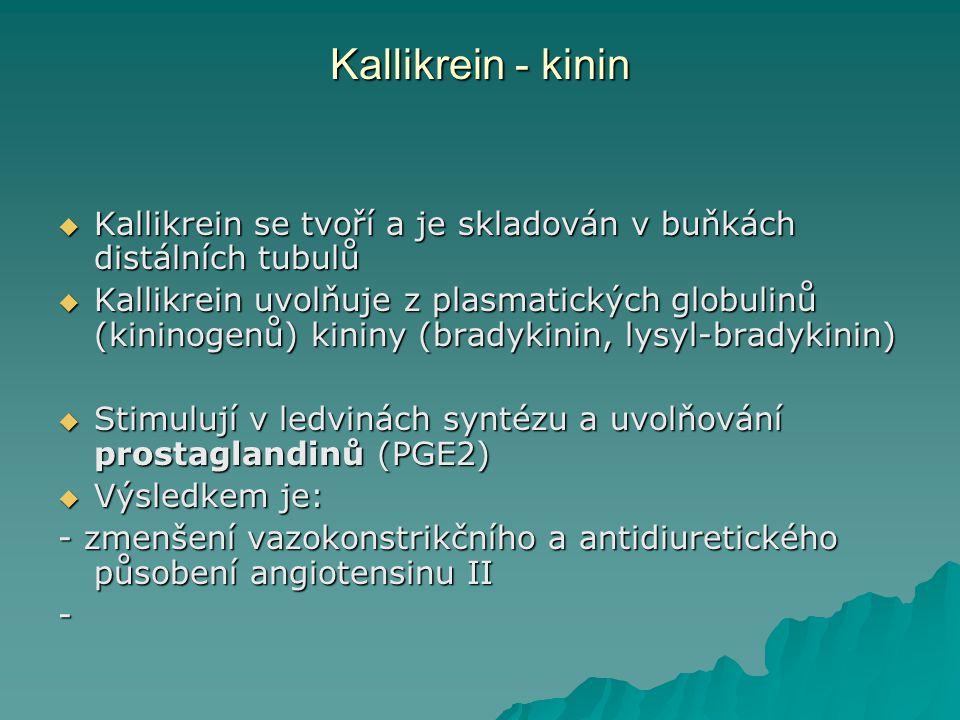 Kallikrein - kinin  Kallikrein se tvoří a je skladován v buňkách distálních tubulů  Kallikrein uvolňuje z plasmatických globulinů (kininogenů) kinin