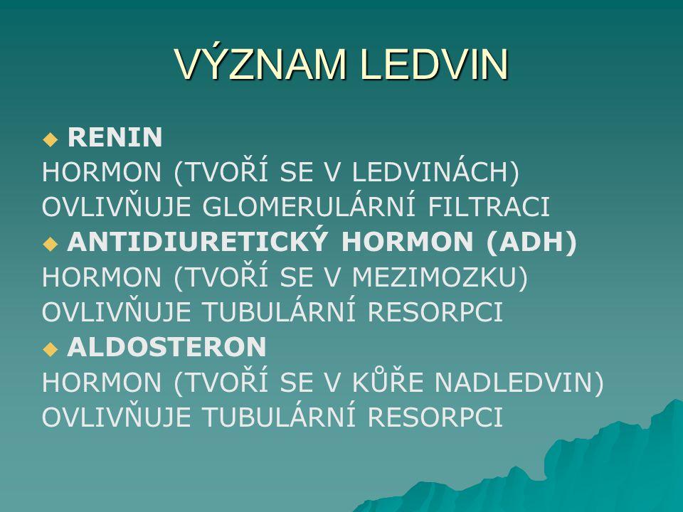VÝZNAM LEDVIN   RENIN HORMON (TVOŘÍ SE V LEDVINÁCH) OVLIVŇUJE GLOMERULÁRNÍ FILTRACI   ANTIDIURETICKÝ HORMON (ADH) HORMON (TVOŘÍ SE V MEZIMOZKU) OV