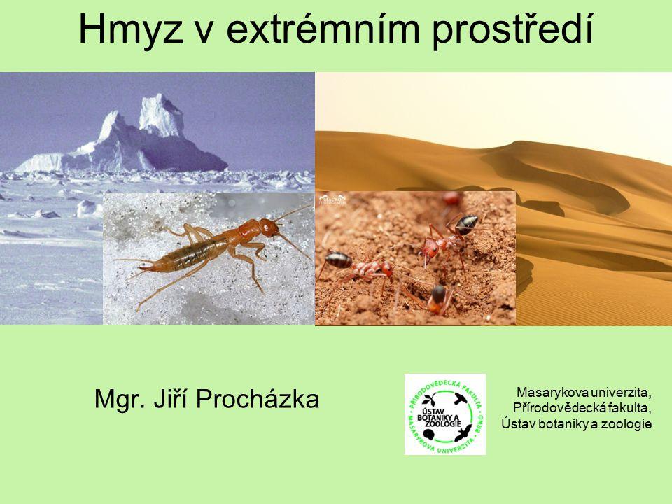 Hmyz v extrémním prostředí Mgr. Jiří Procházka Masarykova univerzita, Přírodovědecká fakulta, Ústav botaniky a zoologie