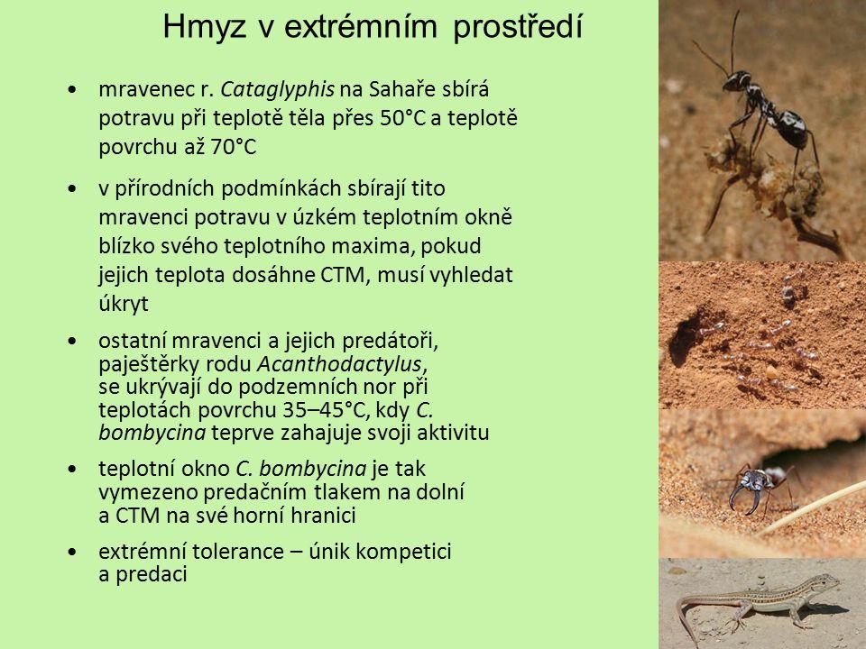 Hmyz v extrémním prostředí Termální prameny některé bakterie se vyskytují až do teploty blízké bodu varu, někteří drobní zástupci mnohobuněčných živočichů tolerují teploty až k 60°C, avšak není znám jediný živočišný druh schopný dokončit svůj celý životní cyklus při teplotě vyšší než 50°C horní teplotní limit pro hmyz v aktivní životní fázi je 50°C charakteristická společenstva bezobratlých se vyskytují ve vodách teplejších než 40°C po celém světě pakomár Chironomus tentans břežnice Ephydrella thermarum