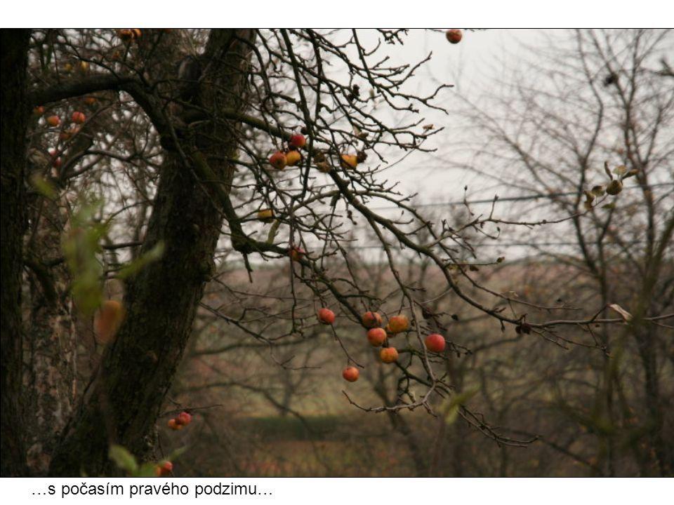 …s počasím pravého podzimu…