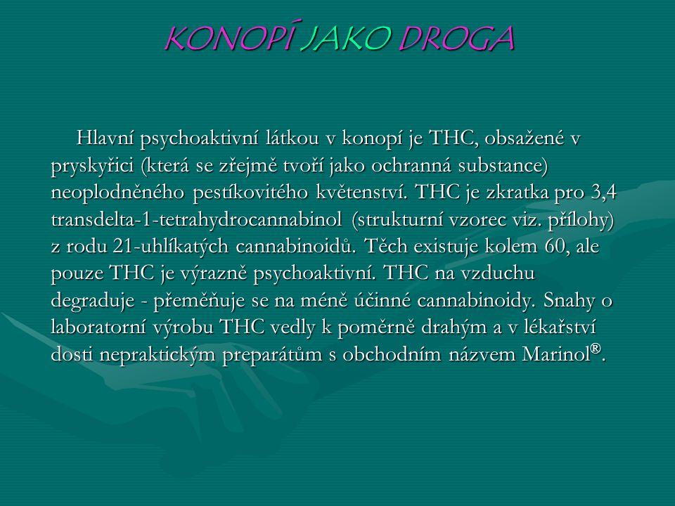 KONOPÍ JAKO DROGA Hlavní psychoaktivní látkou v konopí je THC, obsažené v pryskyřici (která se zřejmě tvoří jako ochranná substance) neoplodněného pestíkovitého květenství.