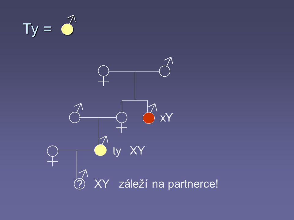 ♂ ♂ ♀ ♀ ♂ ♂ ♀ ♂ ♂ ? xY tyXY XY záleží na partnerce! Ty =