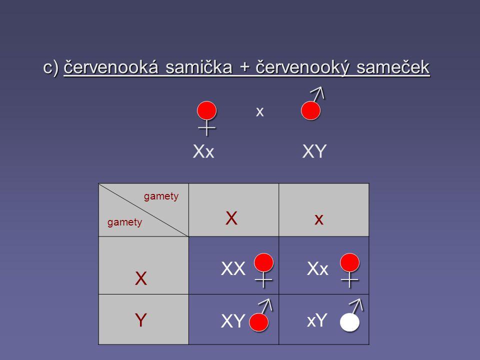 c) červenooká samička + červenooký sameček ♀ x Xx XY♀ ♂♂ ♂ gamety X X Y x XXXx xY XY♀