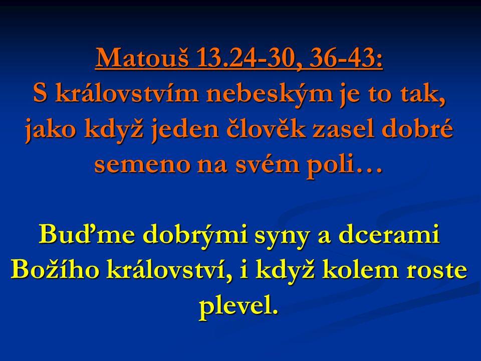 Matouš 13.24-30, 36-43: S královstvím nebeským je to tak, jako když jeden člověk zasel dobré semeno na svém poli… Buďme dobrými syny a dcerami Božího království, i když kolem roste plevel.