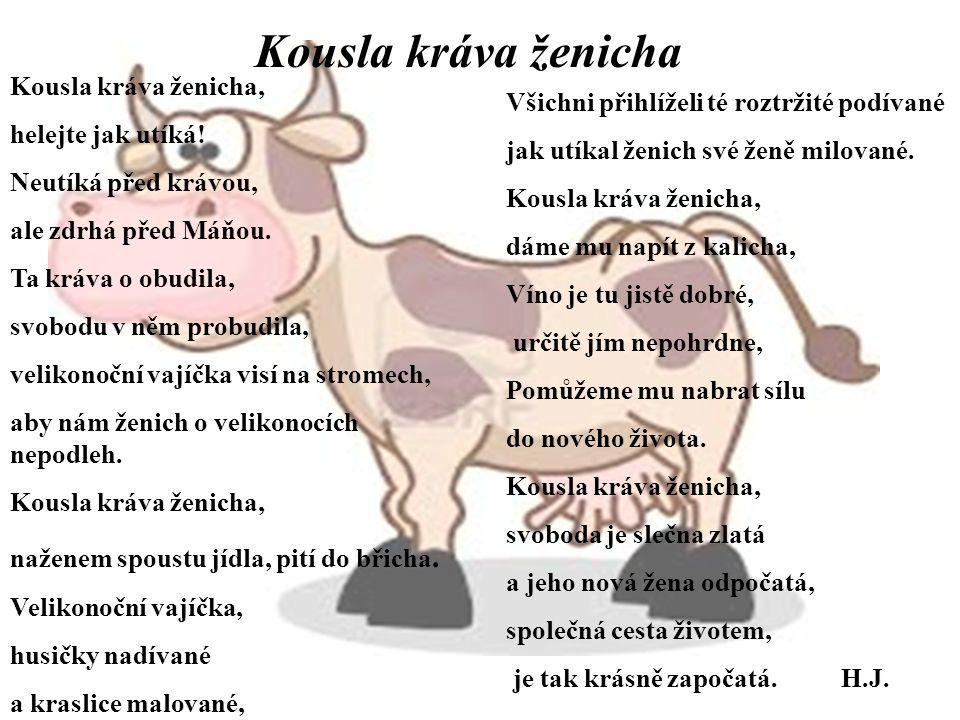 Kousla kráva ženicha, helejte jak utíká! Neutíká před krávou, ale zdrhá před Máňou. Ta kráva o obudila, svobodu v něm probudila, velikonoční vajíčka v