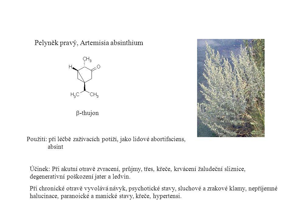 Pelyněk pravý, Artemisia absinthium  -thujon Použití: při léčbě zažívacích potíží, jako lidové abortifaciens, absint Účinek: Při akutní otravě zvracení, průjmy, třes, křeče, krvácení žaludeční sliznice, degenerativní poškození jater a ledvin.