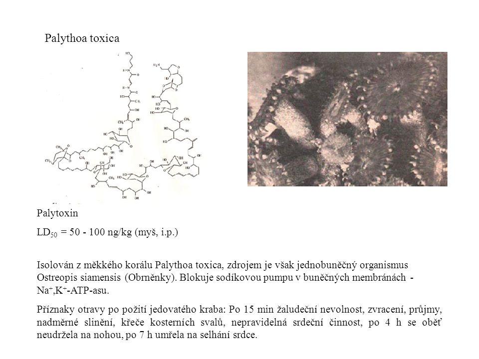 Palythoa toxica Palytoxin LD 50 = 50 - 100 ng/kg (myš, i.p.) Isolován z měkkého korálu Palythoa toxica, zdrojem je však jednobuněčný organismus Ostreopis siamensis (Obrněnky).