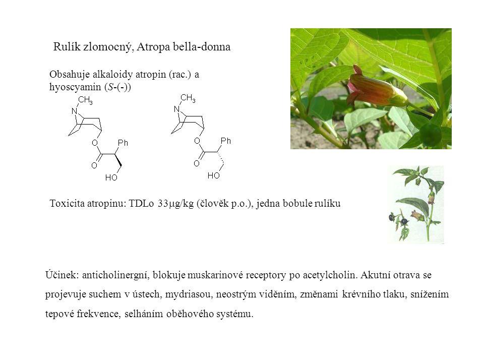 Rulík zlomocný, Atropa bella-donna Obsahuje alkaloidy atropin (rac.) a hyoscyamin (S-(-)) Toxicita atropinu: TDLo 33  g/kg (člověk p.o.), jedna bobule rulíku Účinek: anticholinergní, blokuje muskarinové receptory po acetylcholin.
