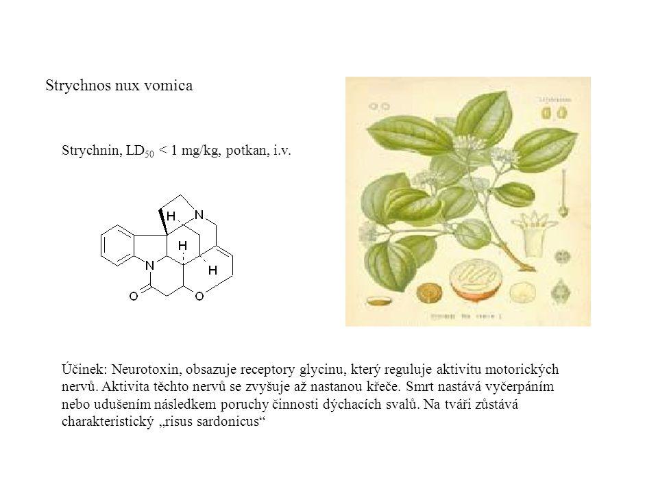 Strychnos nux vomica Strychnin, LD 50 < 1 mg/kg, potkan, i.v.