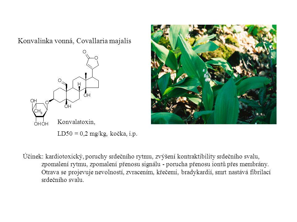Konvalinka vonná, Covallaria majalis Konvalatoxin, LD50 = 0,2 mg/kg, kočka, i.p.