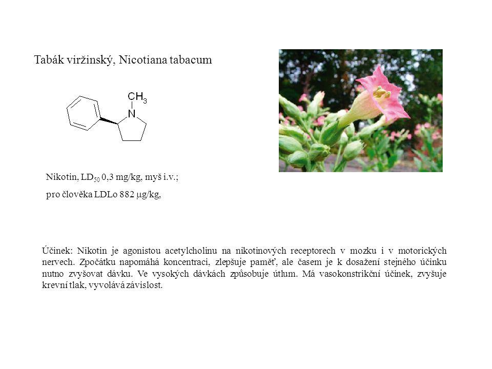 Tabák viržinský, Nicotiana tabacum Nikotin, LD 50 0,3 mg/kg, myš i.v.; pro člověka LDLo 882  g/kg, Účinek: Nikotin je agonistou acetylcholinu na nikotinových receptorech v mozku i v motorických nervech.