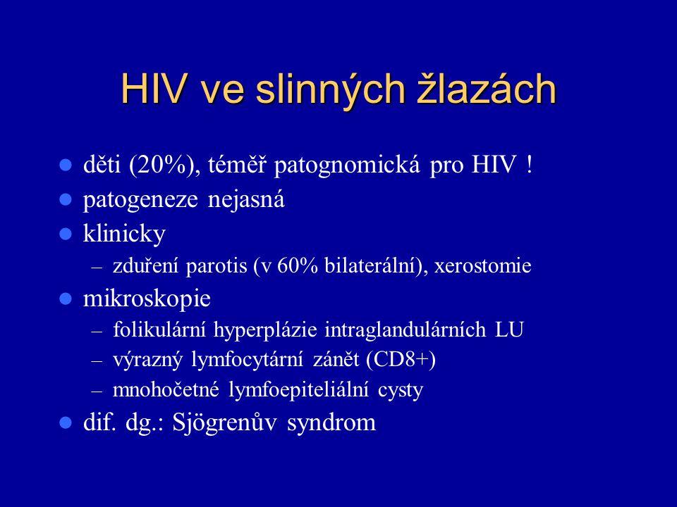 HIV ve slinných žlazách děti (20%), téměř patognomická pro HIV ! patogeneze nejasná klinicky – zduření parotis (v 60% bilaterální), xerostomie mikrosk