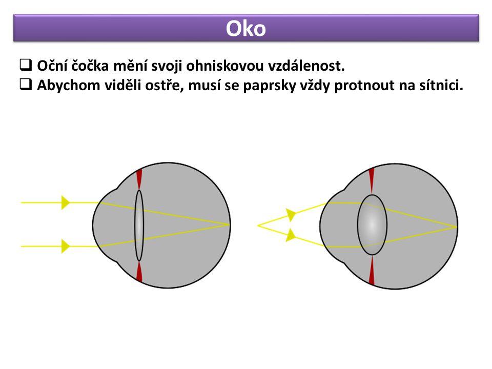 Oko  Oční čočka mění svoji ohniskovou vzdálenost.