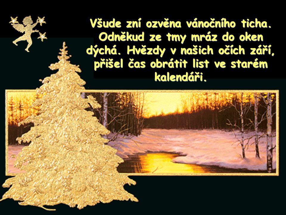 Všude zní ozvěna vánočního ticha.Odněkud ze tmy mráz do oken dýchá.