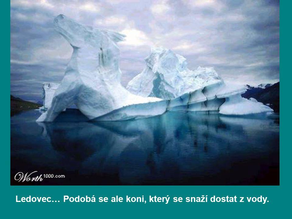 Ledovec… Podobá se ale koni, který se snaží dostat z vody.
