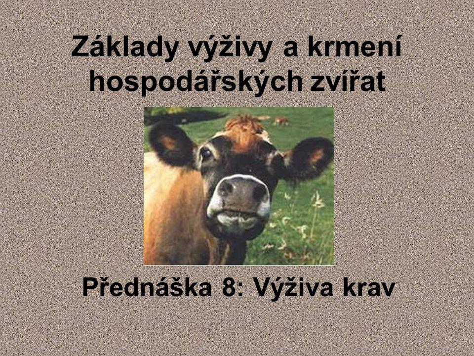 Základy výživy a krmení hospodářských zvířat Přednáška 8: Výživa krav