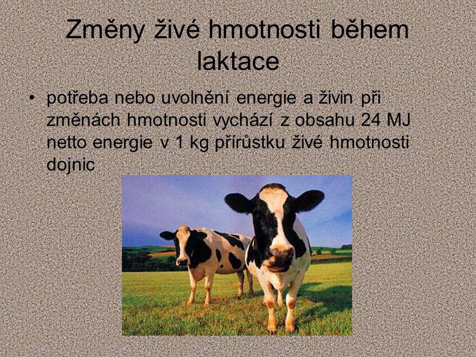 Potřeba vlákniny závisí na živé hmotnosti a na výši produkce mléka Výpočet: Vl (kg) = 0,0189.