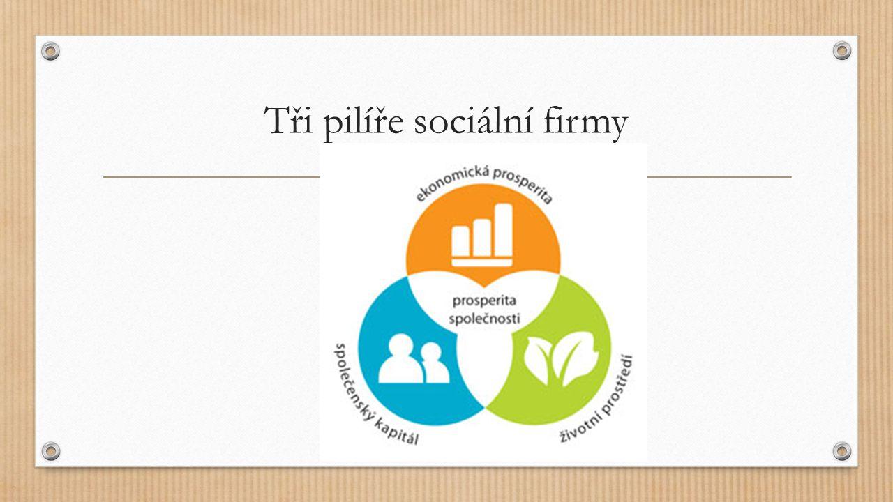 Tři pilíře sociální firmy