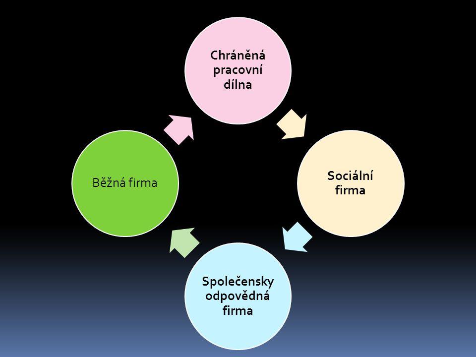 Chráněná pracovní dílna Sociální firma Společensky odpovědná firma Běžná firma