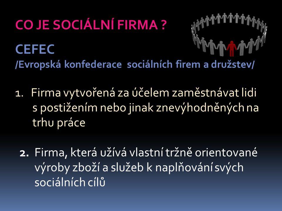 CO JE SOCIÁLNÍ FIRMA .