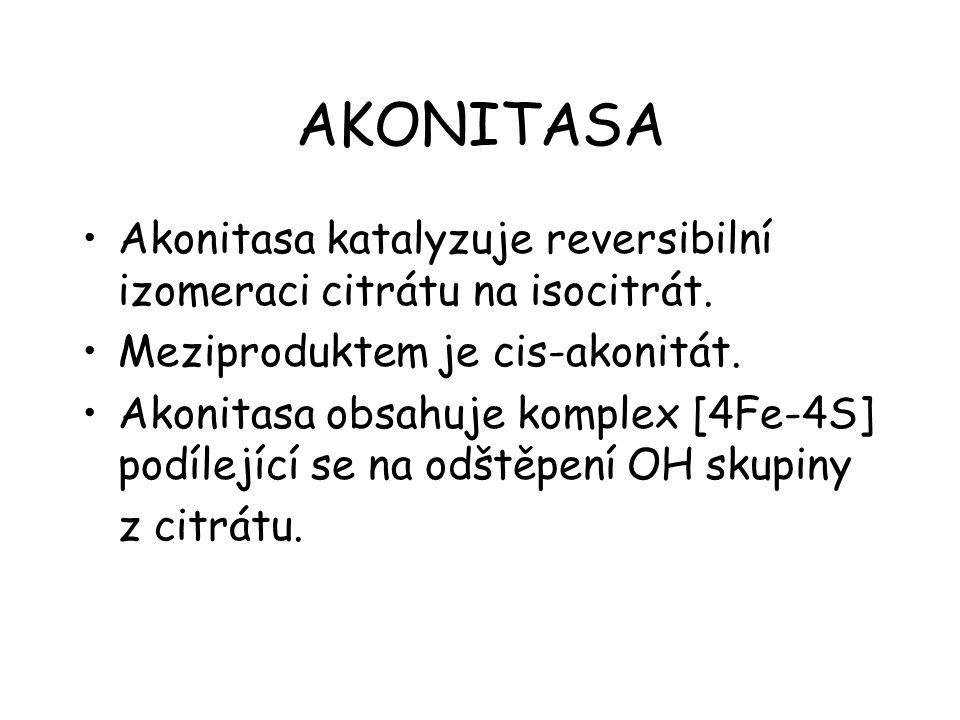 AKONITASA Akonitasa katalyzuje reversibilní izomeraci citrátu na isocitrát.