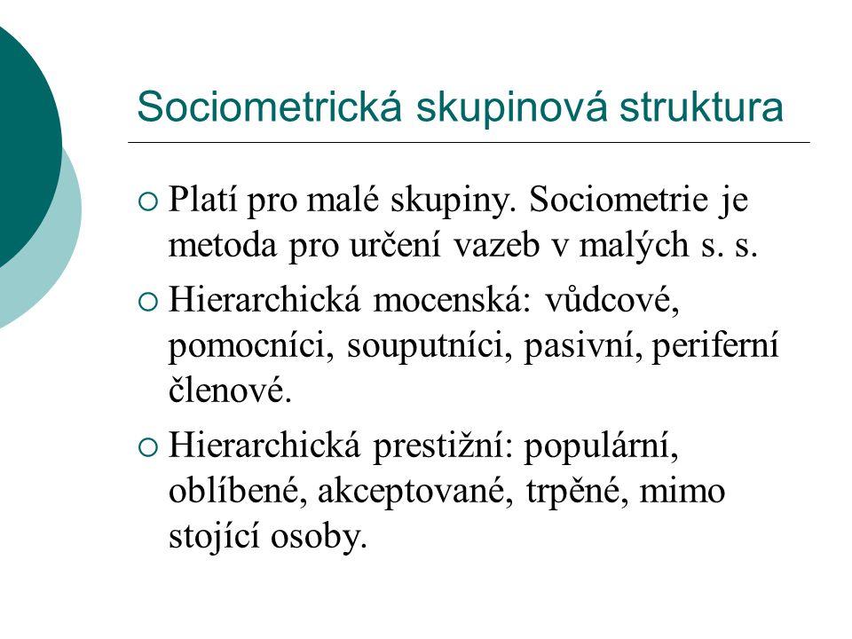 Sociometrická skupinová struktura  Platí pro malé skupiny. Sociometrie je metoda pro určení vazeb v malých s. s.  Hierarchická mocenská: vůdcové, po