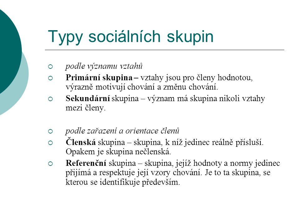 Typy sociálních skupin  podle trvání  Skupina dočasná – skupina vytvářená jen na určitý čas (např.