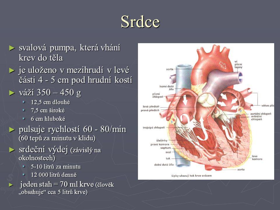 """Srdce ► svalová pumpa, která vhání krev do těla ► je uloženo v mezihrudí v levé části 4 - 5 cm pod hrudní kostí ► váží 350 – 450 g  12,5 cm dlouhé  7,5 cm široké  6 cm hluboké ► pulsuje rychlostí 60 - 80/min (60 tepů za minutu v klidu) ► srdeční výdej (závislý na okolnostech)  5-10 litrů za minutu  12 000 litrů denně ► jeden stah = 70 ml krve (člověk """"obsahuje cca 5 litrů krve)"""