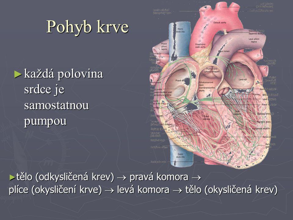 Činnost srdce ► základ systola (smršťování) a diastola (ochabování) srdeční svaloviny ► postup plnění srdce krví (srdeční revoluce) :  systola síní (žílami naplněné síně krví z plic a těla se smrští a převedou krev do komor)  systola komor (naplněné komory se smrští a převedou krev tepnami do plic a těla)  diastola komor i síní