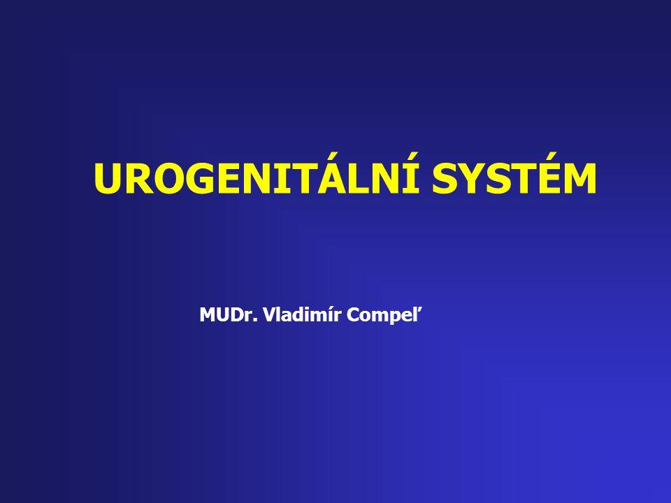 """UROGENITÁLNÍ SYSTÉM Močový systém -reguluje objem a složení tekutin (vody) v těle, -odstraňuje odpadní produkty metabolismu a přebytečnou tekutinu -voda = vitální médium pro distribuci látek, tepla, živin, hormonů, aminů, ředění toxických látek … Pohlavní systém – reprodukční systém -umožňuje reprodukovat se … tj.prvořadá funkce lidského těla, """"jako biologické bytosti ..Pudy sexuální a rodičovské jsou nejsilnější z našich základních pudů…"""