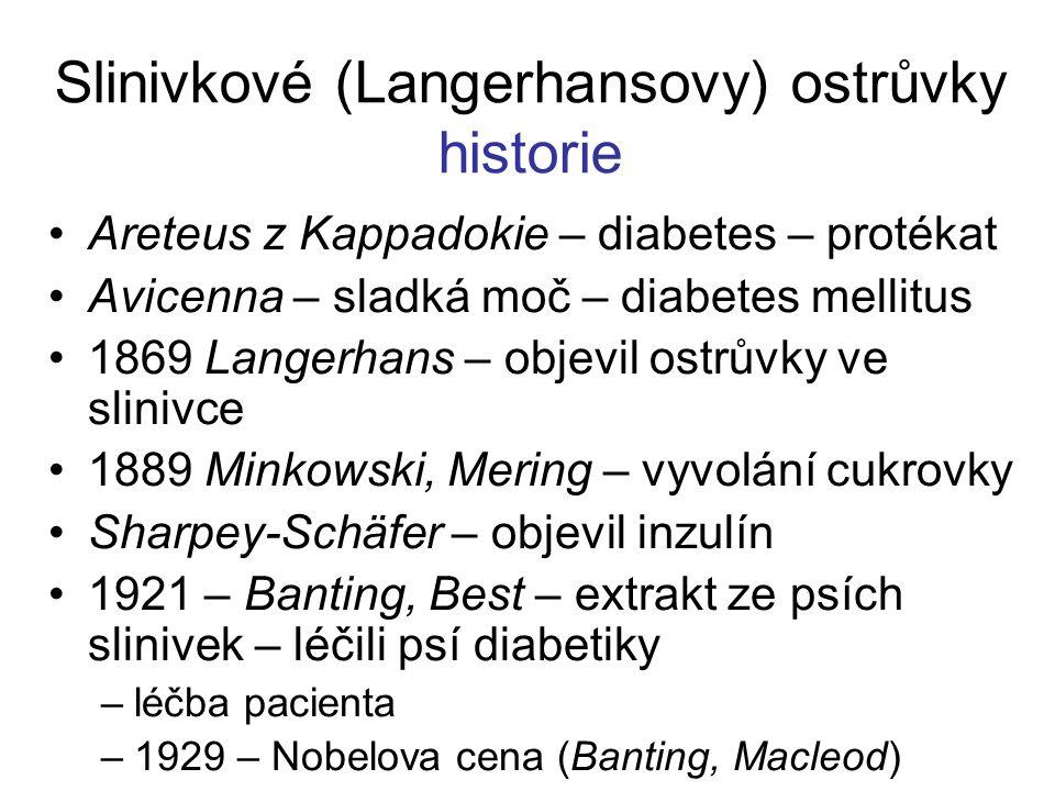 Slinivkové (Langerhansovy) ostrůvky historie Areteus z Kappadokie – diabetes – protékat Avicenna – sladká moč – diabetes mellitus 1869 Langerhans – objevil ostrůvky ve slinivce 1889 Minkowski, Mering – vyvolání cukrovky Sharpey-Schäfer – objevil inzulín 1921 – Banting, Best – extrakt ze psích slinivek – léčili psí diabetiky –léčba pacienta –1929 – Nobelova cena (Banting, Macleod)